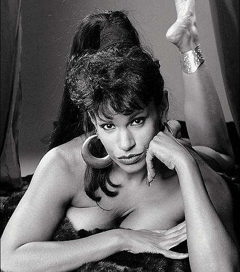 Vanessa Del RioVanessa a latin szexszimbólumok mindenkori királynője. Neve azonos a tüzes, szenvedélyes, tejcsokoládé színű meztelenséggel. Alakja a teltkarcsú nőiességet testesíti meg, buja ajkainak köszönhetően pedig még a legjobb pornószínésznőnek járó díjat is elnyerte 1980-ban, a Dracula Exotica című filmért.