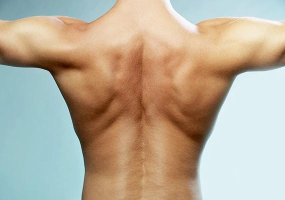 A lapockánál, a gerinc két oldalán olyan idegvégződések találhatóak, amelyek kifejezetten a testi gyönyörkeltést szolgálják. Nem beszélve a keresztcsont területéről, ami a férfitest lehető legérzékenyebb része.