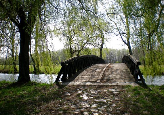 A Debrecen közelében fekvő Vekeri-tó andalogni és horgászni vágyók számára egyaránt ajánlott úti cél lehet. Ha a Nyírségben jártok, mindenképpen tegyetek látogatást itt, ahol a debreceni Campus Fesztivál elindult 2002 nyarán.