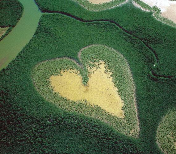 Új-Kaledónia mocsaras erdeiben is akad egy szív alakot kirajzoló vízfelület.