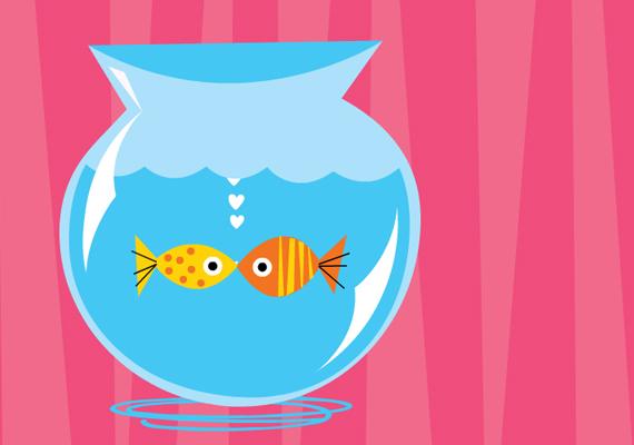 Mint hal a vízben. Pontosabban két hal. És nemcsak a vízben, hanem nagy szerelemben is. A képeslapért kattints ide!