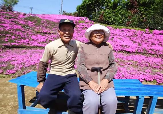 Elérte, amit szeretett volna: romantikus ajándékának köszönhetően Kuroki asszony a szabadban élvezi a tengernyi lila virág illatát.