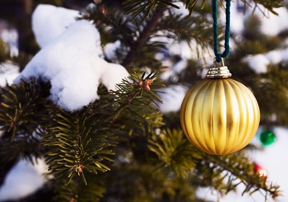 Egy-egy karácsonyi gömböt a hófödte kerti fenyőkre is felakaszthatsz, a látvány magáért beszél.