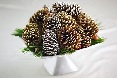 Karácsonyi tál: toboz, fenyőág, hóspray.