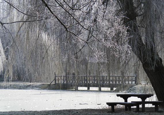 Akárcsak egy romantikus film díszlete: így fest a nagyerdői Békás-tó télen. Kattints ide a nagy felbontású képért! »