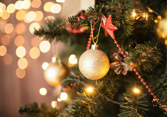 A karácsony egyik legfőbb szimbóluma, a karácsonyfa. Kattints ide, és mentsd le nagyban a képet!