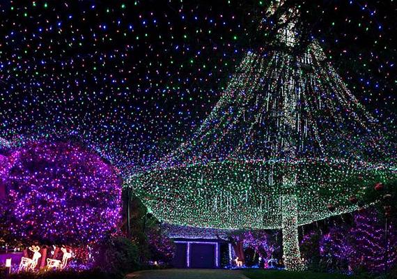 Az ausztrál David és Janean Richards pontosan 331 038 karácsonyi égővel díszítették fel otthonukat. A látványosságból befolyt összeget jótékonysági célra fordították.