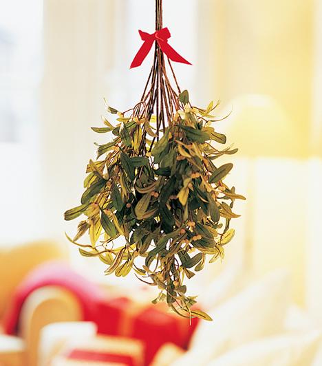 Fagyöngy Egyre több külföldi szokás is behálódzik a karácsonyi ünnepkörbe. Az egyik leginkább kedvelt a fagyöngy fellógatása, amiről új tartja a legenda, hogyha két ember alá áll és csókot vált, akkor szerelembe esnek. A mondás is úgy tartja, hogy fagyöngy alatt szabad a csók.