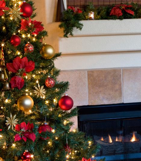 Karácsonyfa állítás A fenyő feldíszítésének története egészen a 16. századig nyúlik vissza. Úgy tartották, hogy a zöld, illatos fa elűzi a rossz szellemeket és cserébe egészséget és szerencsét hoz a ház lakóinak. Ezért fenyőgallyakat akasztottak fel mindenhová, csak később kezdődött a fák kivágása és egészben való beállítása a szobába. Eleinte kizárólag gyertyákat rögzítettek fel rá, később almával, dióval, valamint fából és textiltilból készült díszekkel dekorálták. Magyarországon csak a 19. században terjedt el a karácsonyfa állítás szokása.