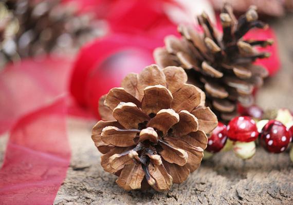 Ha már a parkban jársz, a tobozok mellett egy darab fakérget is vigyél haza. Ragasztópisztollyal rögzítsd a tobozokat a fára, egy piros szalagból köss rá masnit, és már kész is a dekoráció.