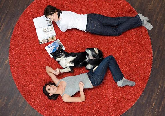 A piros textíliák, legyen az szőnyeg, takaró vagy asztalterítő, fokozzák a gazdagságért és szenvedélyért felelős chi erejét.