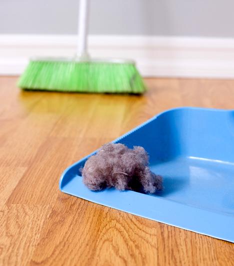 Házi por  A lakásban található allergének közül a legtöbben a házi porra érzékenyek, pontosabban a poratkák ürülékében található fehérjére. A tünetek enyhítése érdekében az alapos takarítás mellett egy speciális, HEPA-szűrős porszívóra is szükség lehet.  Kapcsolódó cikk: Milyen gyakran kell függönyt mosni? Piszkosabb lehet, mint gondolnád »