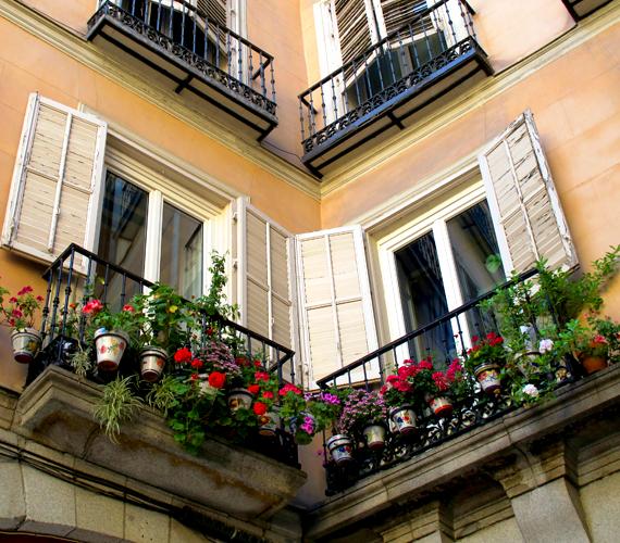 A muskátli nem kényes növény, kezdőknek is tökéletes. Ha csak egy kis franciaerkélyed van, cserépben tartsd őket, jó lesz rájuk nézni a szobából.
