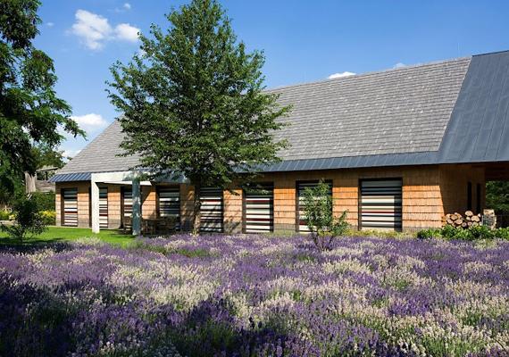 Magyarországon 2013-ban a Dévényi Tamás építész tervei alapján Sóskúton megépült ház nyerte el az Év háza díjat. Ha még több képet néznél meg róla, és a további magyar díjazottakra is kíváncsi vagy, kattints ide!