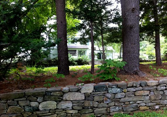 Marilyn hitt abban, hogy a csendes, hatalmas kerttel körülvett házban végre normális életet élhet.