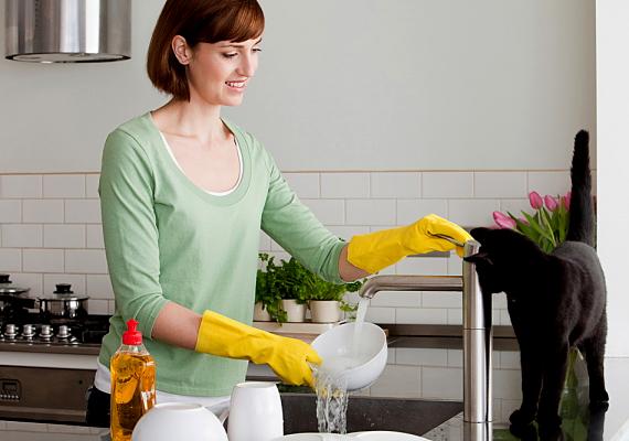 Ha az edényeket szénsavas vízben áztatod, gyorsabban eltüntetheted az odaégett ételmaradékot a mosogatás során.