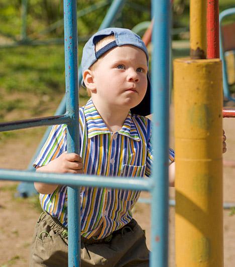 Közeli zöldterület  Ha vásárolsz, akkor érdemes gondolnod a jövőre, és akkor is megnézni, van-e a közelben játszótér, iskola és óvoda, ha még nincs gyereked. Ha albérletbe költözöl, akkor sem hátrány, ha van a közelben némi zöldterület, ahová néha kimehetsz sétálni - ha kutyát is tartasz, ez szinte elengedhetetlen feltétel.