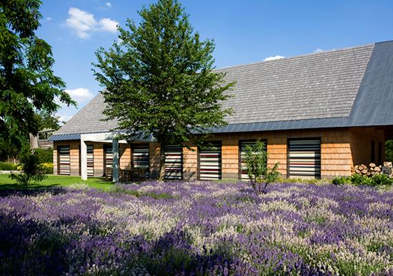 2013-ban ez a Dévényi Tamás nevéhez köthető, sóskúti családi ház lett az Év háza. Kattints ide, ha további képeket is megnéznél róla.