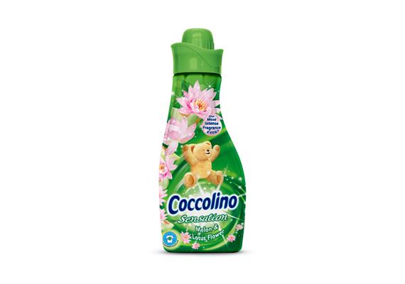 A Coccolino Sensation Sárgadinnye & Lótuszvirág frissítő illatokkal varázsolja a nyarat téli otthonodba.