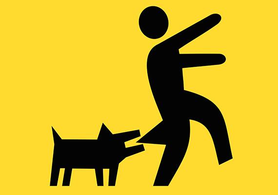 A házőrző kutyára figyelmeztető tábla elrettentő hatását magyarázni sem kell.