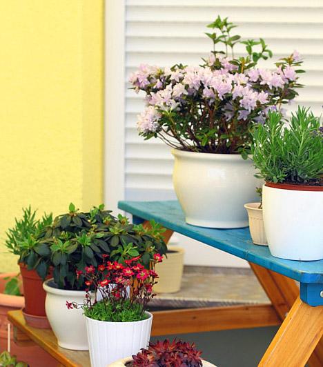 Hangulatos reggelik                         Ha van egy kevés hely, tegyél az erkélyre egy csinos kis kertibútort néhány virággal. Elég, ha csak annyi hely marad az asztalon, ahová le tudsz tenni egy csésze kávét vagy egy pohár bort - máris ideális lesz az erkélyed egy hangulatos reggelihez vagy egy romantikus esti beszélgetéshez. Lakberendezési áruházakban lehet kapni olyan, korlátra szerelhető asztallapokat is, amiket ha nem használsz, egyszerűen lehajthatsz, így nem foglalnak helyet.