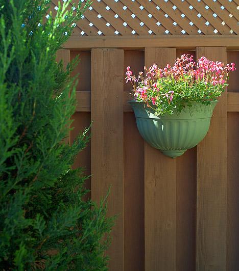 ParavánHa az erkélyt a szomszédod is használhatja, privát teret teremthetsz magadnak egy méretre vágott fa fallal. A paraván funkcióját betöltő elválasztót bármelyik asztalos elkészíti. Tetszés szerinti színnel lefestheted, sőt, virágokat is akaszthatsz rá.