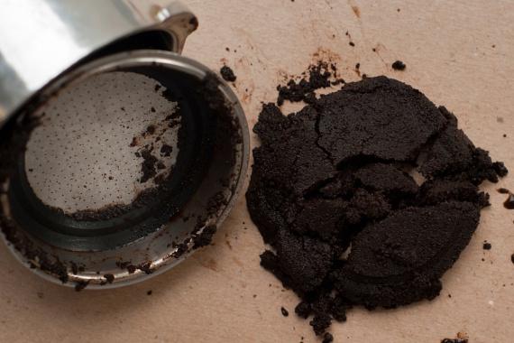 Hangyák ellen hatékony lehet a kávézacc kihelyezése is, nem beszélve arról, hogy az esetleges kellemetlen szagok semlegesítésére is kiváló.