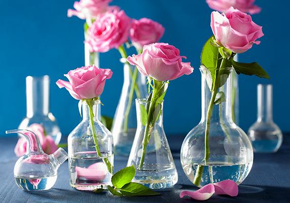 A vágott virág is hosszabb életű lesz, ha a váza vizébe összezúzott aszpirint keversz.