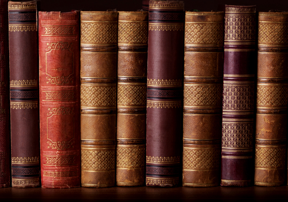 Ha komoly könyvtárral rendelkezel, egyes darabjait is felhasználhatod az értékek, a pénz elrejtésére - érdemes azokat, melyek nehezebben hozzáférhetők.