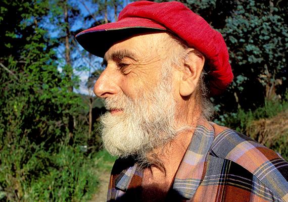 Friedensreich Regentag Dunkelbunt Hundertwasser, 1928-2000.