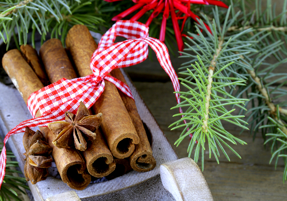 A fahéj nemcsak illatos, de szép dísze is lehet a lakásnak: ha egyszerű megoldást keresel, vegyél egy csomag egész fahéjat, majd egy szép szalaggal kötözd kis csokrokba a rudakat. A lakás számos pontján elhelyezheted őket.
