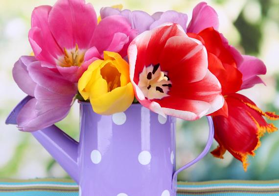 A vágott virágok, bár nagyon szépek, az elmúlást szimbolizálják, így negatív hatással vannak a chi áramlására.