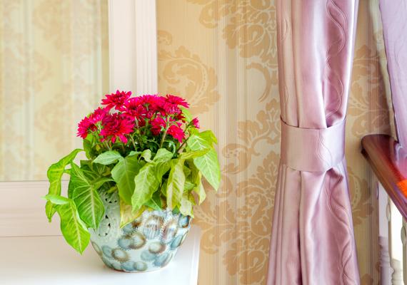 Néhány látványos kiegészítő is frissíthet a nappali megjelenésén: ez lehet akár egy színes növény, de bármilyen hangsúlyosabb dísztárgy is.