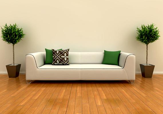 A növények minden helyiségbe életet visznek. Töltsd meg velük a nappalit is, a legjobb, ha egy-két nagyobb, hangsúlyosabb darabot választasz.