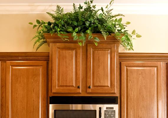 A konyhában is tarthatsz élő, zöld növényeket, azonban ügyelj rá, hogy ezek ne legyenek útban: a szekrény tetején látványos részletként funkcionálhatnak.
