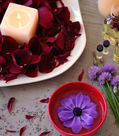 A Claremont&May és a Colonial Candle termékeit az Ambiente üzleteiben vásárolhatod meg Budapesten, a Westend City Centerben és az Aréna Plazában. A Diptyque-termékeket a Neroli Parfümház webáruházában, a Yankee Candle illatosítóit Budapesten az Allé, Mammut, Árkád, Eurocenter és Europark bevásárlóközpontokban, a L'Occitane termékeit pedig a L'Occitane üzleteiben veheted meg. Utóbbiak listáját itt találod. »