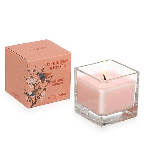 L'Occitane Cherry BlossomA L'Occitane Cherry Blossom illatkombinációjában a domináns cseresznyevirág fréziával és fekete ribizlivel keveredik. Friss, üde illat, a virágoknak köszönhetően azonban kellemes, édes jegyekkel bír.