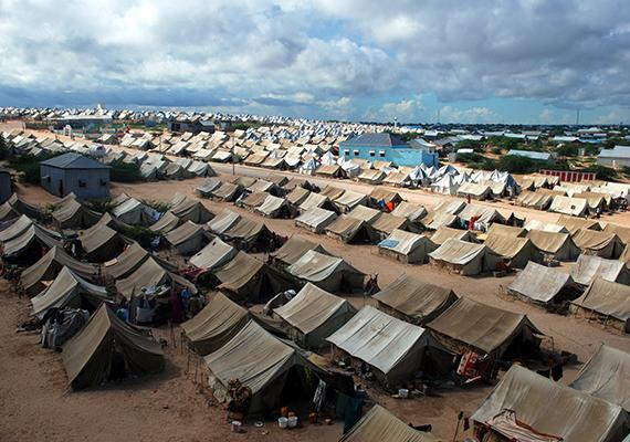 Menekülttábor a törökországi Surucban, mely a Kobaniból, az iszlám állam elől elmenekülő szíriai kurdoknak nyújt menedéket.