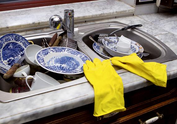 A szemeteshez hasonlóan a mosogató környékére is ügyelj, öblítsd el a tányérokat, és ne hagyj bennük maradékot, amellett ugyanis, hogy gyorsan romlanak, és elszaporodhatnak miattuk például a legyek, a hangyák is könnyen megjelenhetnek.
