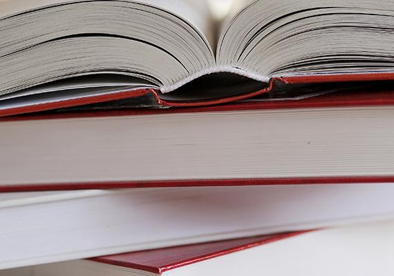 A végrehajtó nem foglalhat le olyasmit, ami a rendszeres tanulmányok végzéséhez szükséges, legyen szó tankönyvekről, tanszerekről vagy épp hangszerről.