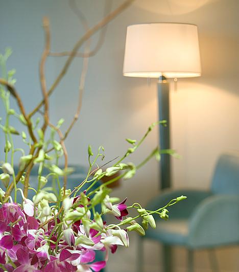 Dekoratív állólámpaA fénnyel a nappaliban is játszhatsz, sokat változtathatsz vele a hangulatán. Egy dekoratív, méretében meghatározó lámpával ráadásul egészen új fényben tüntetheted fel a helyiséget.