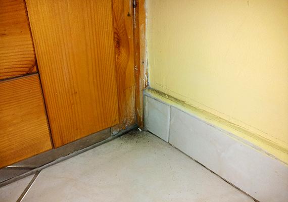 A penészesedés szerencsére nem terjedt ki nagyobb felületre, a járólapon kívül azonban a fal felületét is érinti.