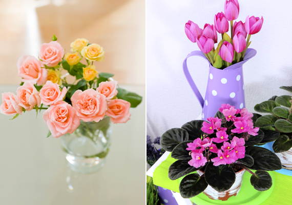 Egyszerű megoldás az is, ha a természet segítségével csempészed be a rózsaszín által sugárzott életörömöt otthonodba: egy ilyen virág üde színfoltja lesz a lakásnak.