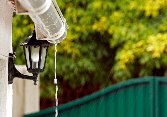 Ha van kerted vagy nagyobb balkonod, mely telis-tele van virágokkal, az öntözéshez érdemes összegyűjtened a nyári esők vizét.