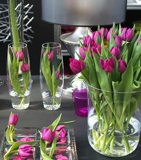 Tavaszi dekorációs tippek  A langyos napsugarak és a hosszú tél után végre újra illatozó, tarka virágok mindenkiből előcsalogatják a lakberendező hajlamot. Ha te is szeretnéd a négy fal közé csalni a kikelet hangulatát, meríts ihletet képgalériánkból, és öltöztesd friss, tavaszi köntösbe a lakást!