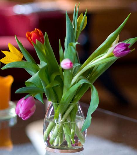 Friss virágok  Tavasz táján igazán nem nehéz friss virágokat szerezni, ha nincs is saját kerted, akár munkából hazafelé is lépten-nyomon vásárolhatsz pár száz forintért egy csokor illatozó tulipánt vagy nárciszt, mely nemcsak pompásan mutat a nappaliban vagy a konyhában, de csodás illattal tölti be a lakást.  Kapcsolódó képgaléria: 15 érdekes tény a tulipánokról »