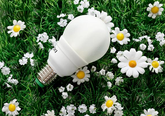 Az energiatakarékos izzó használata az egyik legegyszerűbb áramspórolási módszer.