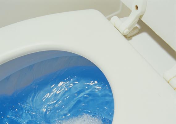 Ha kellemetlen illat árad a WC-ből, az fakadhat abból is, hogy a lefolyó szifonjaiban nincs elég víz, ami miatt visszaáramlik a csatornából a szag. A probléma orvoslására az is elég lehet, hogy egy kevés vizet öntesz bele. Itt olvashatsz erről még többet!