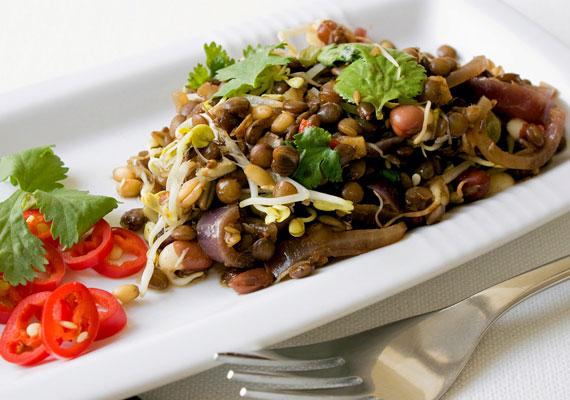 LencsesalátaHa valamilyen összetevő maradt a szilveszteri időszakból, az biztosan a lencse. A fehérjében gazdag hüvelyessel biztosan jóllaksz majd, és ez ki is tart egy darabig. Friss zöldségekkel dobhatod fel a kész salátát, egy kis vékonyra reszelt zellerrel egészen pompás lakoma. Az összetevőktől függően 2-300 kalóriát tesz ki egy közepes adag. Így készíts belőle salátát!