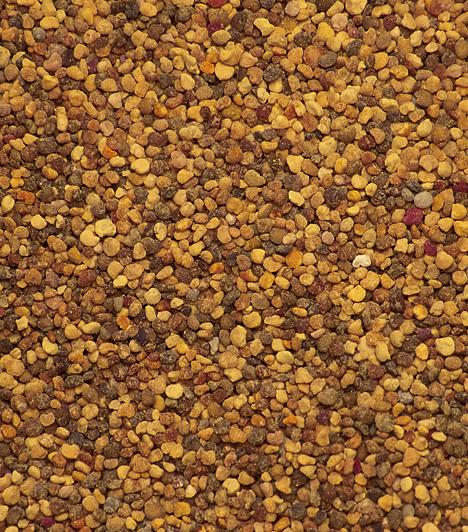 MustárLeginkább mártás formájában találkozni a kis magokkal. A szósz tulajdonképpen a magból őrölt liszt vizes, fűszerezett keveréke. Kétfélét használunk, a fehéret, Sinapis alba, és a feketét, Brassica nigra. A leghíresebb a dijoni, melyről már a 14. században is azt írták, hogy a legjobb. Húsok pácolásához és persze sült kolbász mellé tökéletes.